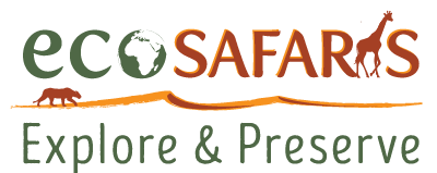 Safaris en immersion : Ecosafaris